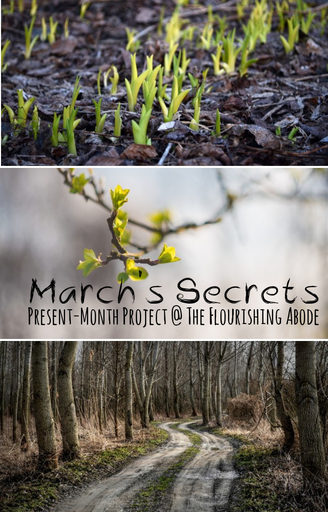 March Secrets - Present Month Project